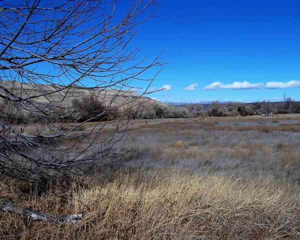 Lot 1 Vineyard Subdivision,, Hagerman, ID 83332 (MLS #98678164) :: Full Sail Real Estate