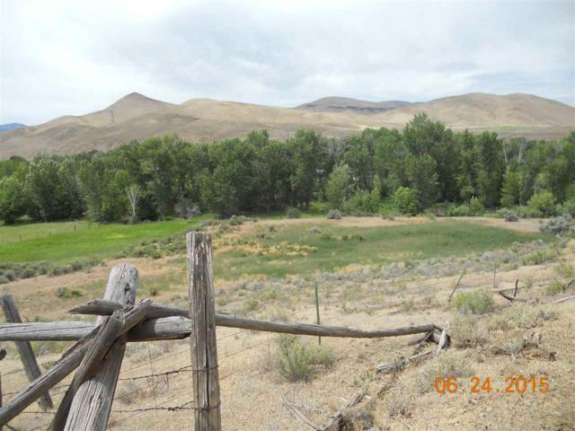 Lot 16 Rocky Mountain Meadows, Challis, ID 83226 (MLS #98680300) :: Jon Gosche Real Estate, LLC