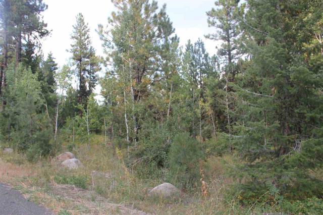 1596 Lakeridge Drive, Mccall, ID 83638 (MLS #98680844) :: Juniper Realty Group
