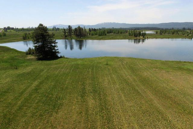 lot 24 River Ranch Road, Mccall, ID 83638 (MLS #98681348) :: Juniper Realty Group