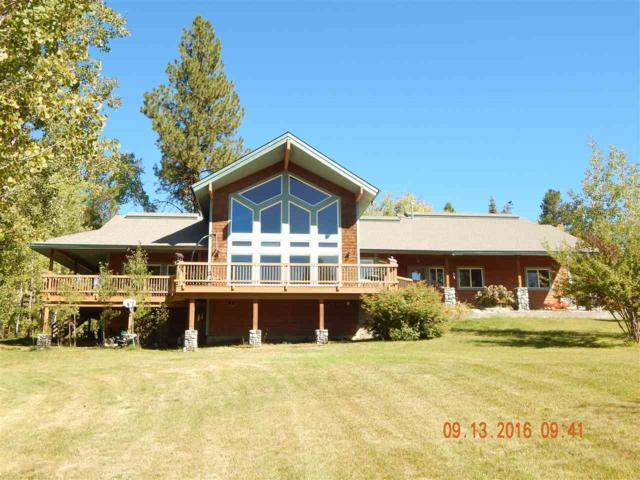 45 Silver Fox Trail, Mccall, ID 83638 (MLS #98681365) :: Jon Gosche Real Estate, LLC