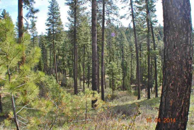 Lots 7 & 8 Dored Pines, Boise, ID 83716 (MLS #98681618) :: Juniper Realty Group