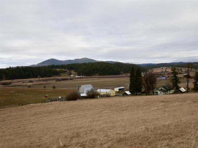 1101 Ruby Creek Rd, Harvard, ID 83834 (MLS #98681786) :: Boise River Realty