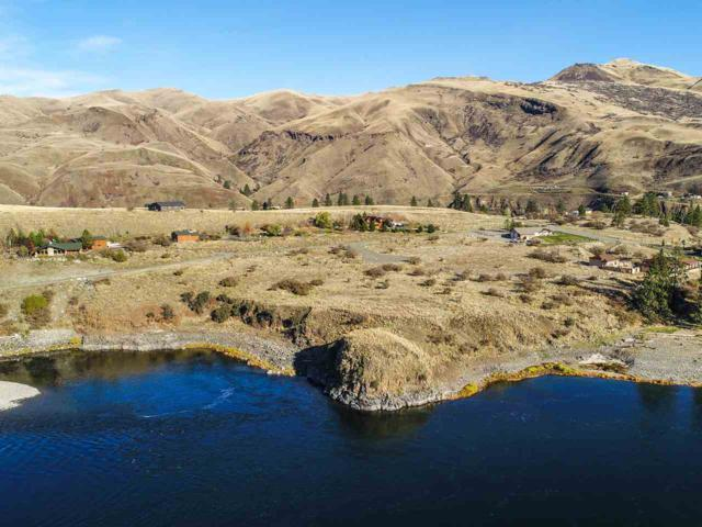 Lot 24 Mossy Point Circle, White Bird, ID 83554 (MLS #98682104) :: Jon Gosche Real Estate, LLC