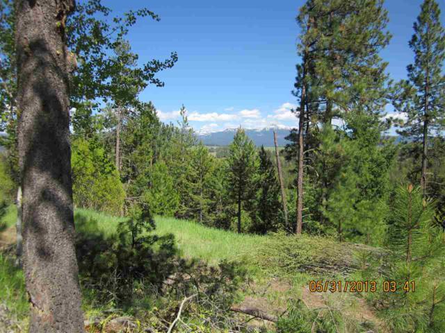 81 Sundance Drive, Mccall, ID 83638 (MLS #98682339) :: Boise River Realty