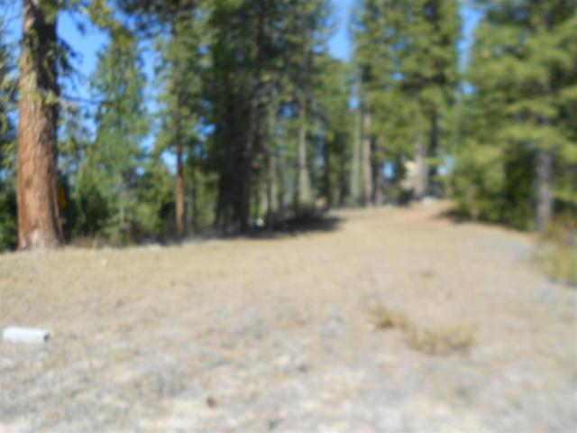TBD Star Claim Tract 3, Idaho City, ID 83631 (MLS #98682716) :: Expect A Sold Sign Real Estate Group