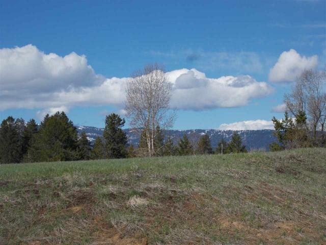 7 Raptor Court, Mccall, ID 83638 (MLS #98682988) :: Juniper Realty Group