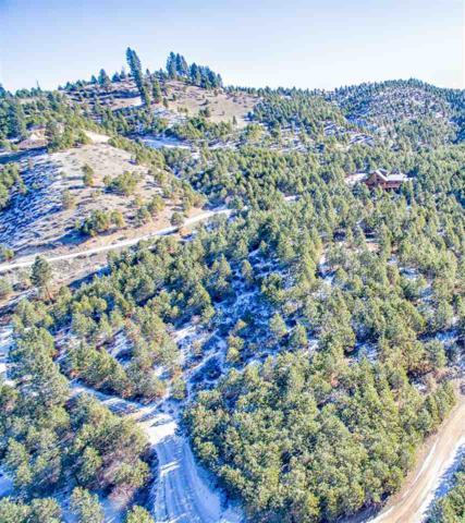 Lot 29 High Corral, Boise, ID 83716 (MLS #98683371) :: Jon Gosche Real Estate, LLC