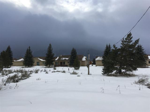 13111 Cameron Dr, Donnelly, ID 83615 (MLS #98684390) :: Zuber Group
