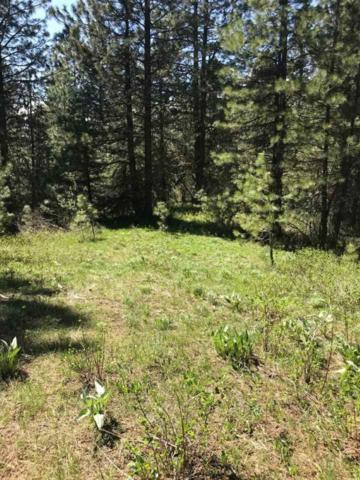 TBD Outlaw Trail, Banks, ID 83602 (MLS #98684908) :: Juniper Realty Group