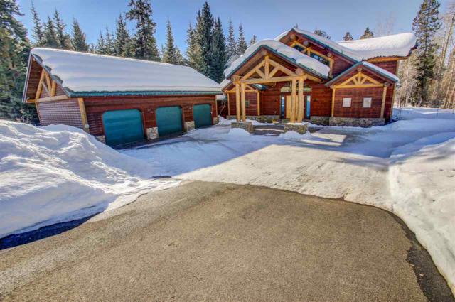 1008 Penstemen Place, Mccall, ID 83638 (MLS #98685016) :: Juniper Realty Group