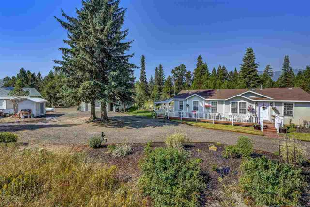 223 Angus Lane, Donnelly, ID 83615 (MLS #98685549) :: Juniper Realty Group