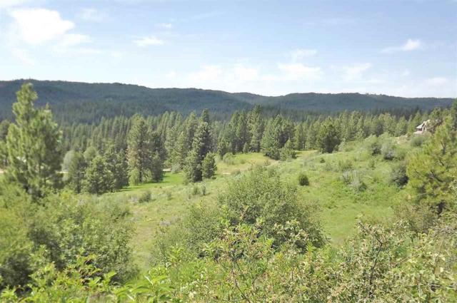 TBD Meadow Lot 28 Block 3, Idaho City, ID 83631 (MLS #98686805) :: Boise River Realty