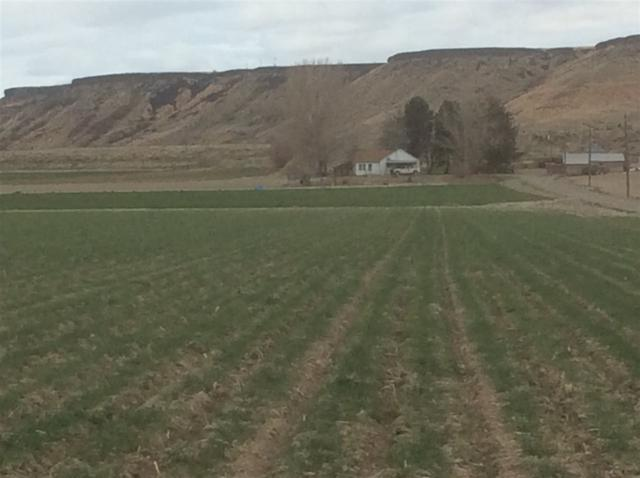 18020 Map Rock Road, Caldwell, ID 83607 (MLS #98687154) :: Team One Group Real Estate