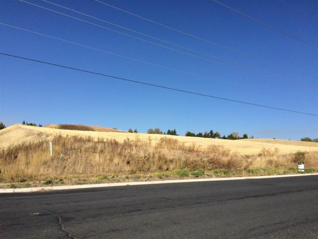 TBD E Palouse River Drive, Moscow, ID 83843 (MLS #98688832) :: Full Sail Real Estate