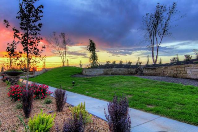 Phase 1 Block 3 Lot 28, Eagle, ID 83616 (MLS #98689339) :: Epic Realty