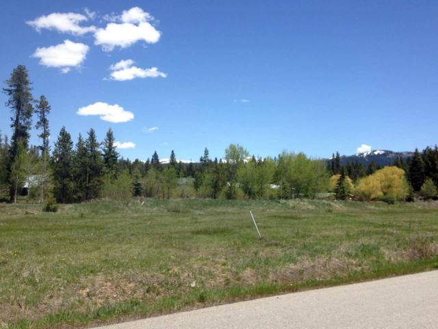 1017 Kaitlyn Loop, Mccall, ID 83638 (MLS #98689371) :: Boise River Realty