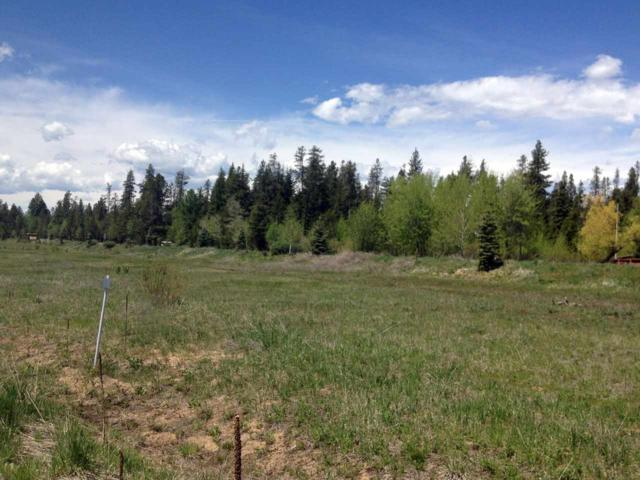 1025 Kaitlyn Loop, Mccall, ID 83638 (MLS #98689373) :: Juniper Realty Group