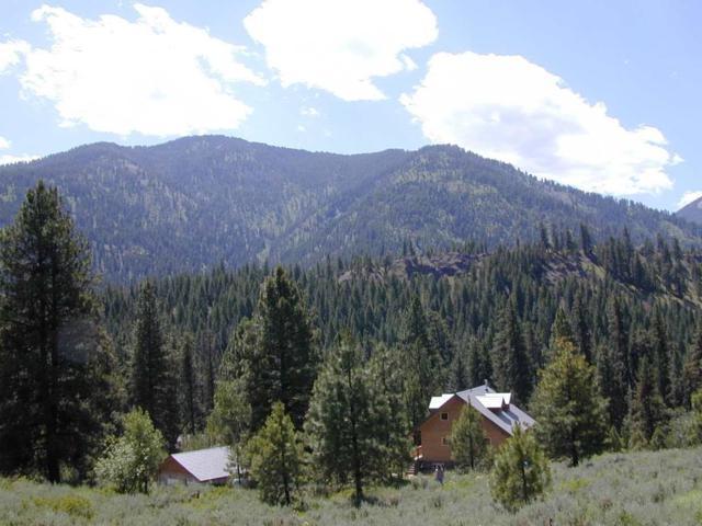 28 Valley Road, Lowman, ID 83637 (MLS #98690137) :: Jon Gosche Real Estate, LLC
