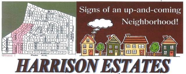 TBD Lake Cleveland Street, Burley, ID 83318 (MLS #98690284) :: Juniper Realty Group
