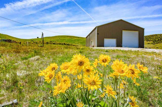 29 Family Place, Horseshoe Bend, ID 83629 (MLS #98691319) :: Juniper Realty Group