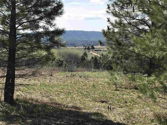TBD Samson Trail, Mccall, ID 83638 (MLS #98691358) :: Build Idaho