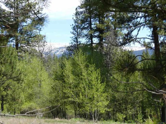TBD Columbine, New Meadows, ID 83654 (MLS #98691829) :: Juniper Realty Group