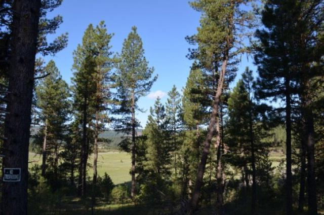 TBD Meadows Road, New Meadows, ID 83654 (MLS #98692265) :: Juniper Realty Group