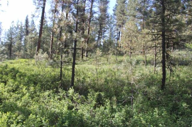 Lot 8 Yarrow Drive, New Meadows, ID 83654 (MLS #98692548) :: Juniper Realty Group