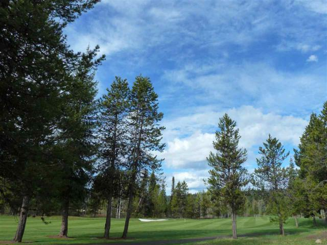 3918 Wolf Creek Court, Mccall, ID 83638 (MLS #98692616) :: Full Sail Real Estate