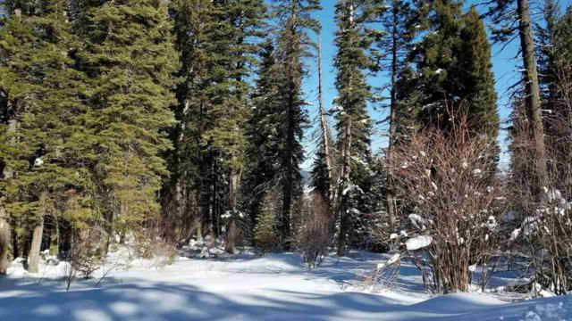8 Owl Creek Dr, Cascade, ID 83611 (MLS #98692909) :: Full Sail Real Estate