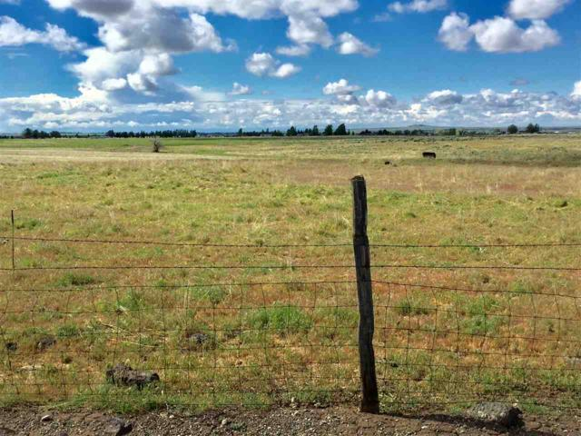 TBD Lot 4 Plus 5 Acres, Talladega 520 N, Shoshone, ID 83352 (MLS #98693252) :: Jeremy Orton Real Estate Group
