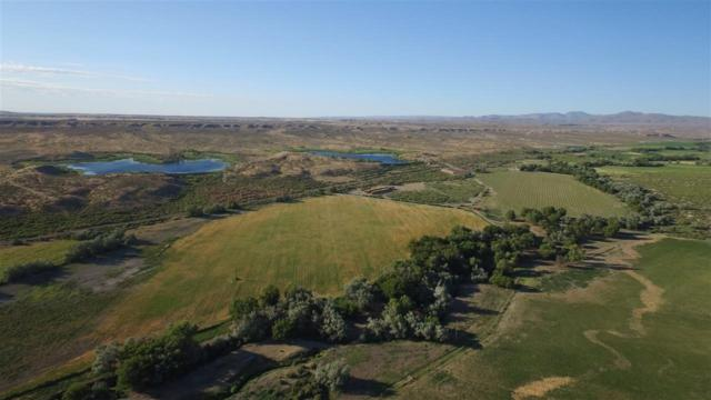 20726 Oreana Loop Rd., Oreana, ID 83650 (MLS #98693944) :: Jon Gosche Real Estate, LLC