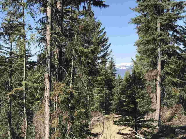 TBD Silver Fox Spur, Mccall, ID 83638 (MLS #98694091) :: Jon Gosche Real Estate, LLC
