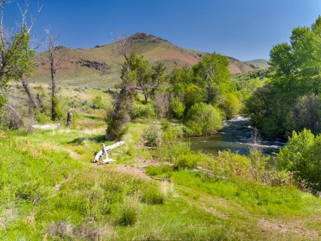810 Little Wood Reservoir, Carey, ID 83320 (MLS #98694353) :: Juniper Realty Group