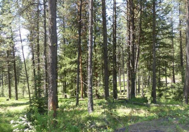 Lt 13 Meadows Drive, New Meadows, ID 83654 (MLS #98694790) :: Jon Gosche Real Estate, LLC