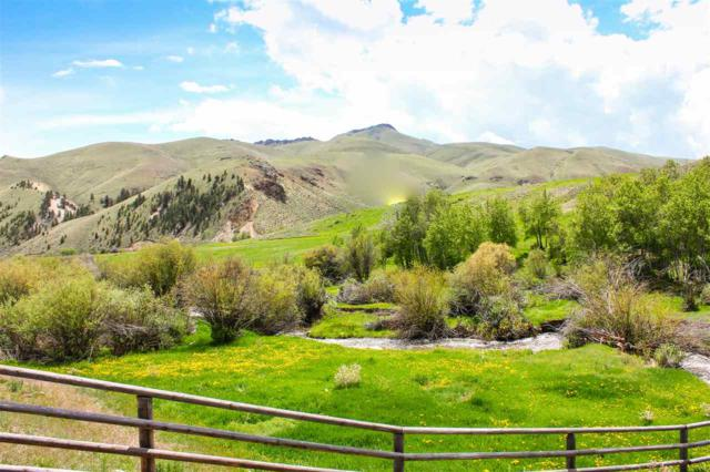 324 Basin Creek Rd, Salmon, ID 83465 (MLS #98695599) :: Idahome and Land