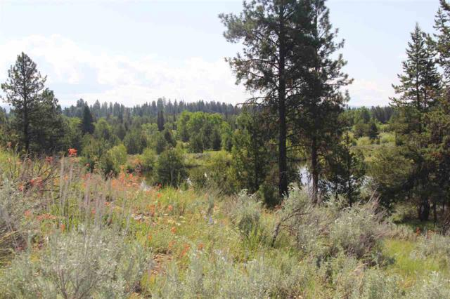 Lot 18 Bitterroot Ct, Mccall, ID 83638 (MLS #98695625) :: Juniper Realty Group