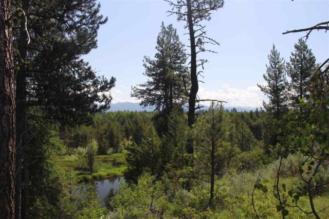 Lot 17 Bitterroot Ct, Mccall, ID 83638 (MLS #98695629) :: Juniper Realty Group