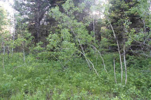 Lot 53 Marywood Drive, Mccall, ID 83638 (MLS #98695838) :: Jon Gosche Real Estate, LLC