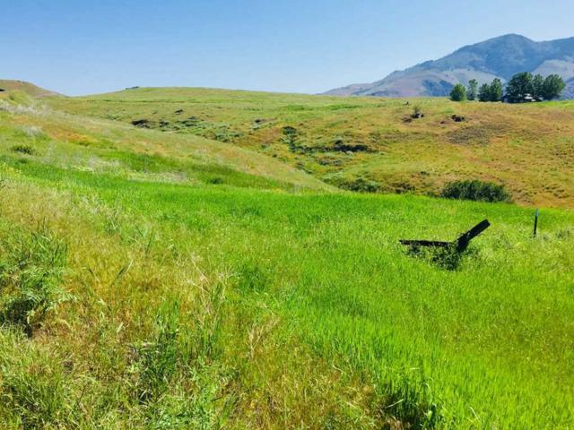 31 Whitewater Wilderness Dr, Pollock, ID 83547 (MLS #98695863) :: Broker Ben & Co.
