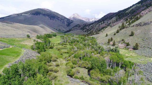 726 Pahsimeroi Road, May, ID 83253 (MLS #98696540) :: Build Idaho