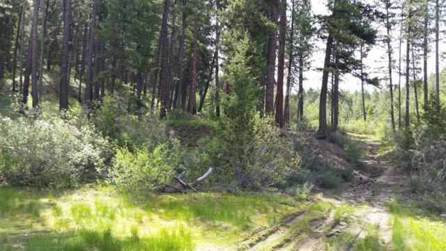 TBD Spanish Loop, Idaho City, ID 83631 (MLS #98696703) :: Jon Gosche Real Estate, LLC