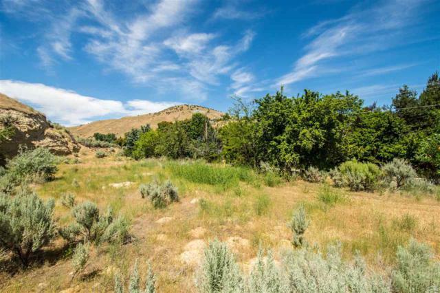3909 N Cartwright Rd, Boise, ID 83702 (MLS #98696749) :: Jon Gosche Real Estate, LLC
