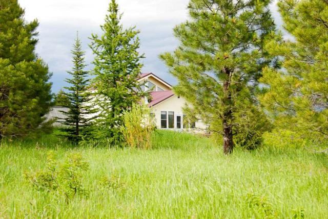 44 Heinrich Lane, Mccall, ID 83638 (MLS #98697524) :: Boise River Realty