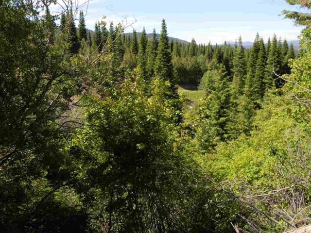0 Finlandia Rd., Donnelly, ID 83615 (MLS #98697676) :: Zuber Group