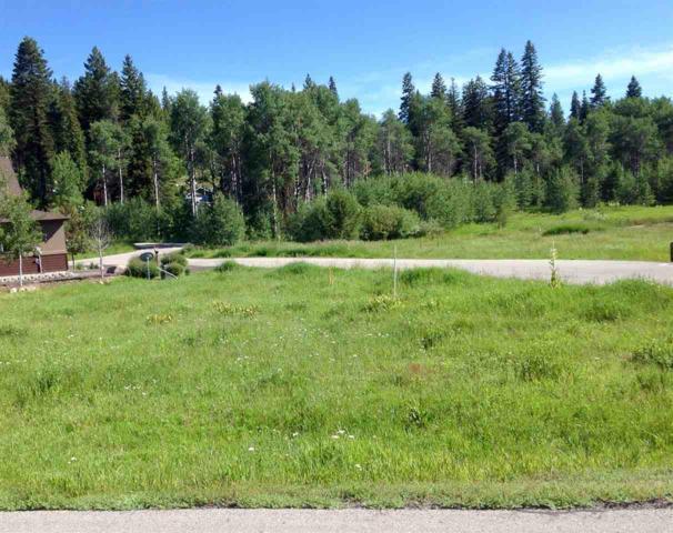 Lot 45/46 Dragonfly Loop, Mccall, ID 83638 (MLS #98697905) :: Jon Gosche Real Estate, LLC