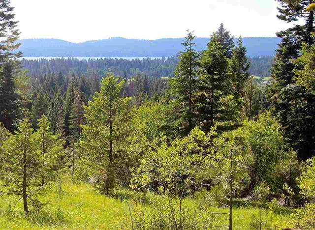 Lot 32 Heavens Gate Court, Mccall, ID 83638 (MLS #98697923) :: Full Sail Real Estate
