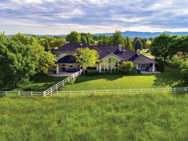 3555 S Rustler Pl, Meridian, ID 83642 (MLS #98698517) :: Jon Gosche Real Estate, LLC