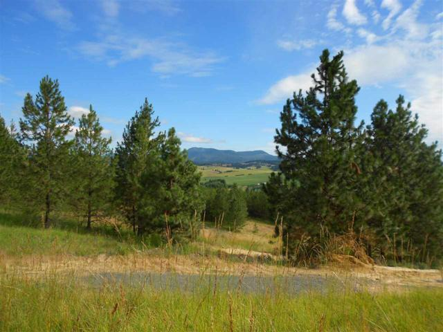 TBD Katnook Lane # 7, Moscow, ID 83843 (MLS #98699164) :: Juniper Realty Group